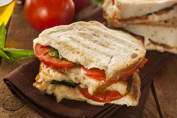Homemade Tomato and Mozzarella Panini
