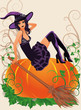 Halloween witch and pumpkin, vector illustration