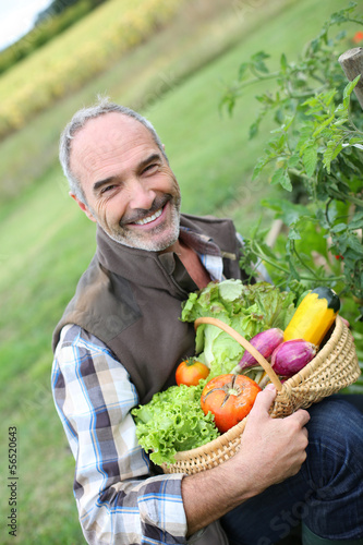 Smiling mature man holding basket of fresh vegetables