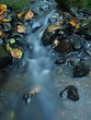 Cascade on small mountain stream
