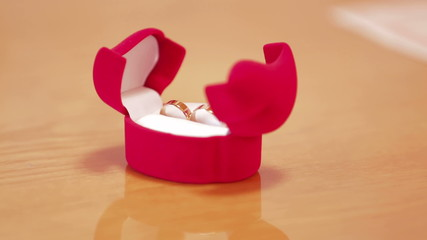 Two engagement rings in a box prepared for the ceremony