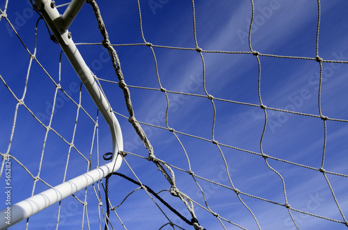 In the net