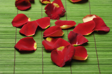 Pile of red rose petals on green mat