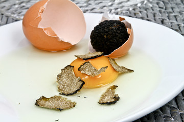 truffes et coquilles d'oeuf