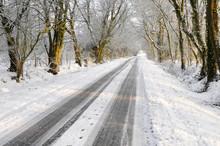 Véhicule suivi couverts de neige sur route de campagne