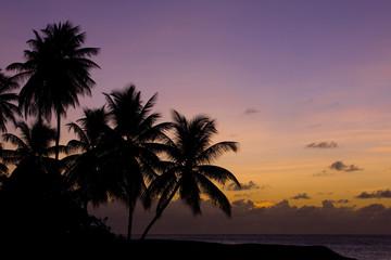 sunset, Turtle Beach, Tobago