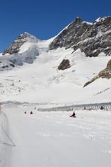 Jungfraujoch Sledging