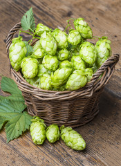 green hop on a table
