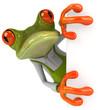 Leinwandbild Motiv Frog gardener