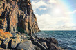 ocean and rocky cliff