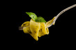 Italian pasta with pesto sauce and basil leaf on fork