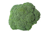 Nutritious broccoli sheaf isolated on white background