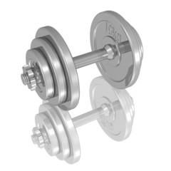 Kurzhantel, Gewicht, Training