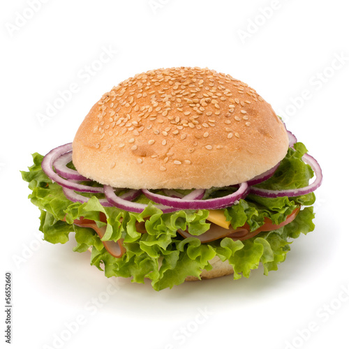 Junk food hamburger