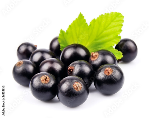 black currants with leaves