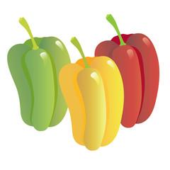 vegetables-03