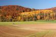 Herbst im Weserbergland mit Wäldern und Feldern - 56562075