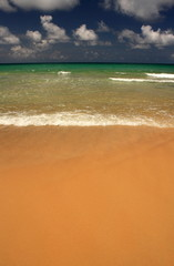 Waves on the tropical, exotic, sandy beach