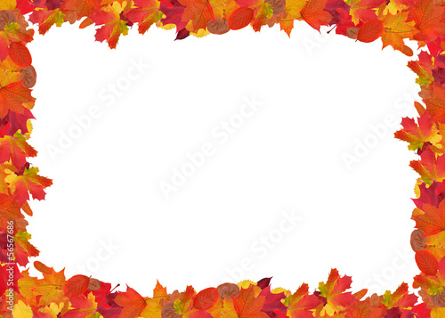 bright autumn leaves frame isolated on white
