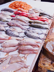 Fresh Fishes on the Market in Essaouira, Morocco