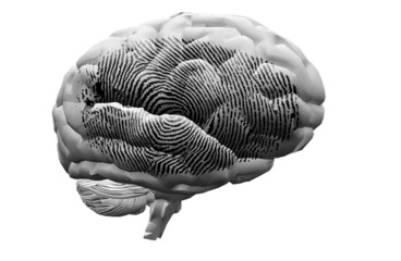 Finger Print on brain
