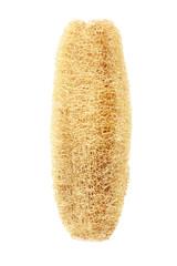 Luffa Sponge