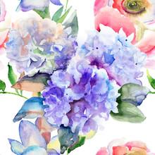 Belles fleurs d'hortensia bleu