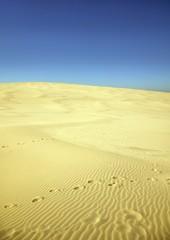Marsch durch die Wüste