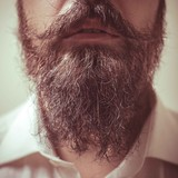 Close up of long beard and mustache
