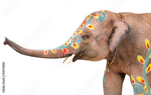 A painted elephant at the songkran festival in ayuthaya ,thailan