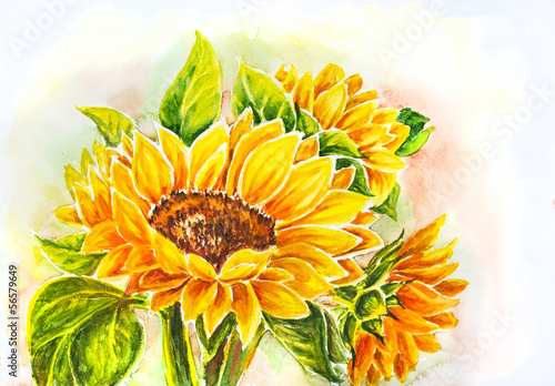 Sunflowers. Watercolor painting. © Valenty