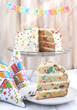 Vanilla Sprinkles Cake. Selective focus