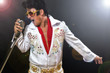 canvas print picture - Elvis