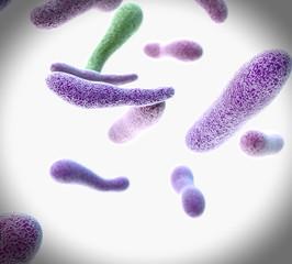 Vista microscopica Bacterias