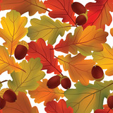 autumn background. Fall oak leaves seamless pattern with acorn.
