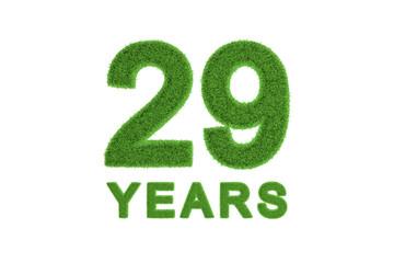 29 Years green grass anniversary numbers
