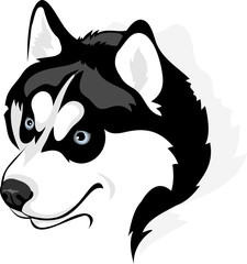 vector image of head of the Siberian Husky dog