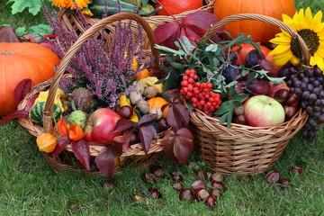 Chestnuts, pumpkins, flowers