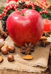 red winter apple with nuts and star anise