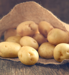 Close up of fresh organic potatoes.
