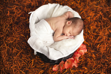 Little newborn baby boy sleeping inside basket