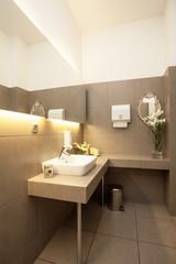 Luxury toilet interior