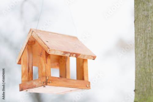 Bird feeder in winter park