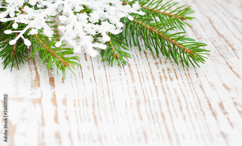 Christmas border with pine tree