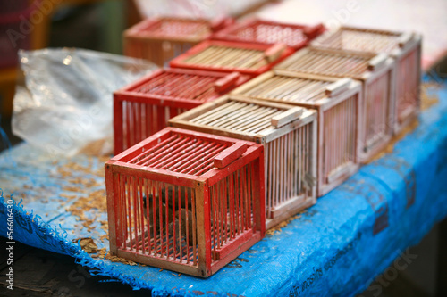 Cage the bird for release in the merit of Thailand