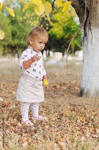 toddler in fall