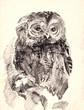 owl brush drawing sketch
