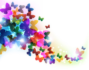 Colorful flying butterflies