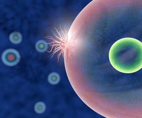 Virus battere e cellula visto al microscopio
