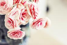 Roses dans le style vintage